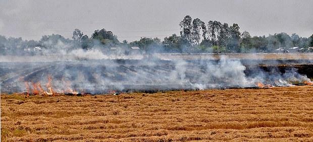Ở các nước Đông Nam Á như Việt Nam, Thái Lan việc đốt chất thải nông nghiệp ngoài đồng như đốt rơm rạ tạo ra những chất độc như hạt muội đen (black carbon) và ozone tầng thấp do đốt cháy không hết mà ra