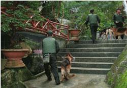"""Công an """"tấn công"""" khu du lịch sinh thái Núi Đá Bia tại ngoại ô thành phố Tuy Hòa, tỉnh Phú Yên, hôm 6/2/2012. File photo."""