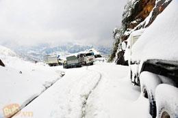 Tuyết phủ dọc đường đèo Ô Quý Hồ, Lào cai dày hàng chục cm vào chiều 16 và sáng 17/12/2013