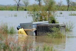 Một nạn nhân lũ lụt Pakistan tại một khu vực bị ngập lụt ở Karampur, ngày 11 tháng 8 năm 2010. AFP PHOTO / Asif Hassan.