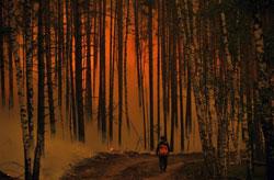 Những đám cháy rừng và than bùn ở Nga bùng phát từ cuối tháng 7/2010. AFP Photo.