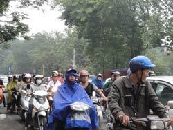 Lượng cây xanh ở Hà Nội nhiều nhưng cũng không thể hấp thụ hết khói bụi của thành phố. RFA photo