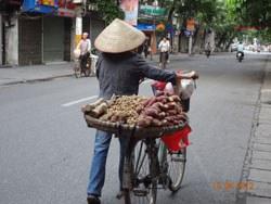 Những phụ nữ bán hàng rong khắp hang cùng ngõ hẻm ở Hà Nội trên chiếc xe đạp. RFA photo
