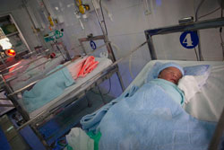 Những em bé sơ sinh tại Việt Nam đang được Tổ chức Project Vietnam giúp đỡ. Photo courtesy of pvnf.org
