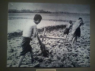Bức ảnh nông dân cày thay trâu tại cuộc triển lãm. Photo by Dũng Vova