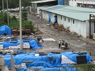 Hồ xử lý nước thải của Công ty Hào Dương nằm phía sau dãy nhà xưởng