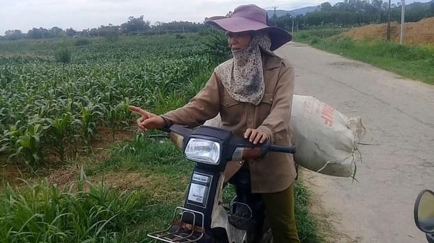 Nhiều ruộng bắp bị sâu keo hoành hành bà con chỉ thu hoạch được 1, 2 tạ