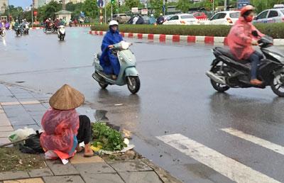 Một cụ bà ngồi bán rau bên đường (RFA)