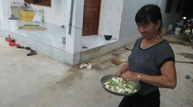 Củ tỏi gắn liền với đời sống cư dân Lý Sơn.