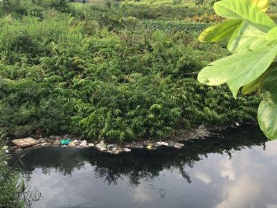 Những giòng nước ô nhiễm quanh khu công nghiệp Tân Bình