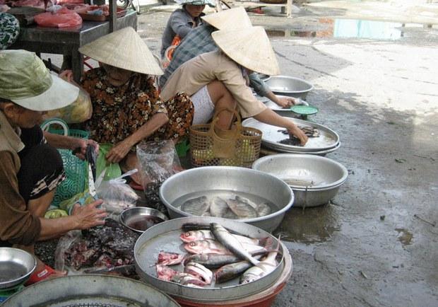 Cá được bày bán tại một chợ quê
