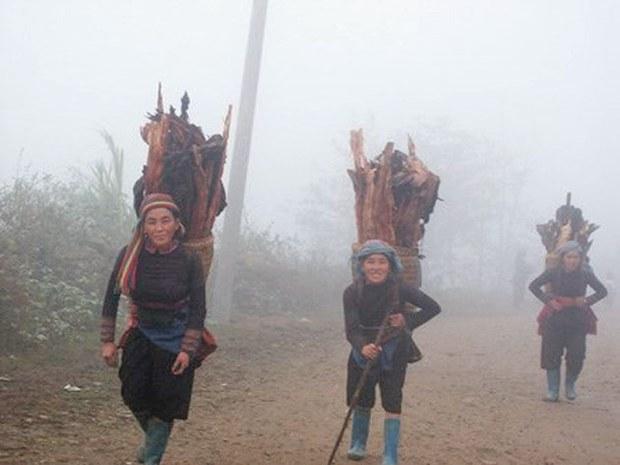 Do ảnh hưởng của không khí lạnh, một số địa phương núi cao như Sa Pa (Lào Cai), Mẫu Sơn (Lạng Sơn) có thể giảm tới 10-12 độ C