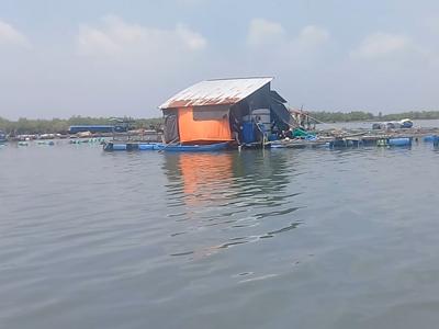 Sông Thị Vải chụp tháng 9/2018.