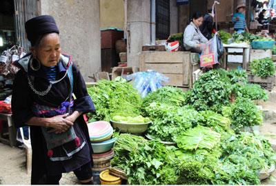Rau xanh có nguồn từ Trung Quốc, bán ở chợ Cốc Lếu, Lào Cai. RFA