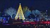 Hình ảnh cây Noel ở khu vực Nhà Trắng tại Washington DC tháng 12 năm 2015