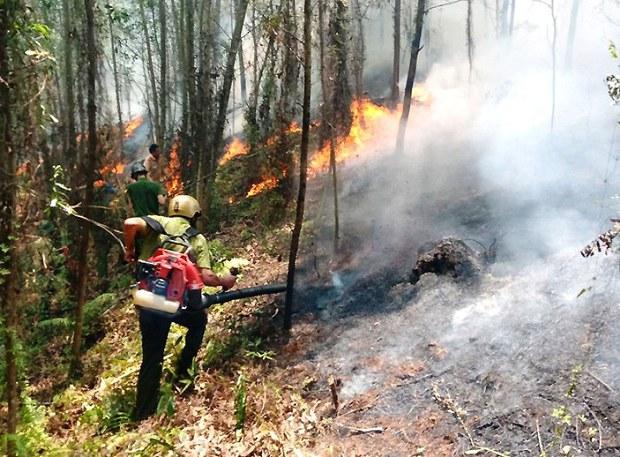 Báo động mức nguy hiểm cháy rừng ở Vườn Quốc gia Hoàng Liên
