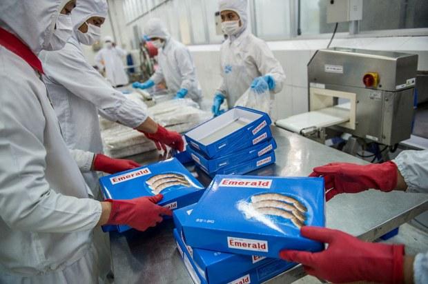 Trung Quốc từ chối nhập nhiều mặt hàng thủy sản Việt Nam