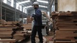 Công nhân tại một xưởng gỗ ở tỉnh Bắc Ninh