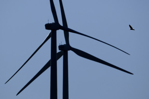GE Renewable Energy cung ứng tuabin cho trang trại điện gió Phước Minh