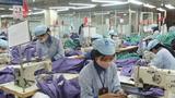 Tiềm năng xuất khẩu Việt Nam tương đối mạnh nhờ  nguồn nhân lực giá rẻ và các chính sách thương mại cởi mở