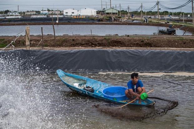 Đồng bằng sông Cửu long sẽ bị hạn mặn nghiêm trọng trong năm 2021