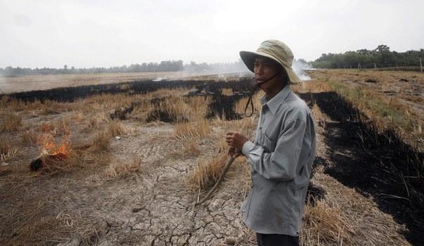 Ảnh minh họa: Một nông dân trên cách đồng hạn hán ở Sóc Trăng hôm 30/03/16.