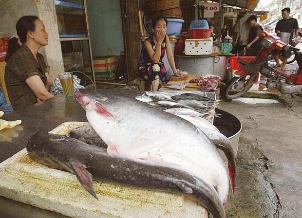 Việt Nam kêu gọi Campuchia xem xét lại lệnh cấm nhập khẩu cá tra