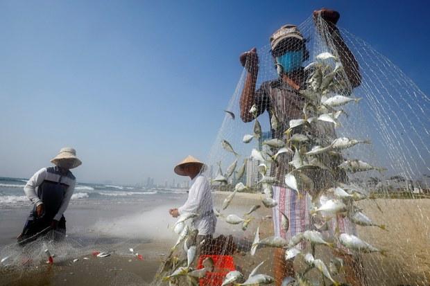 Hội Nghề cá Việt Nam phản đối lệnh cấm đánh bắt cá của Trung Quốc ở Biển Đông, khuyến khích ngư dân ra biển