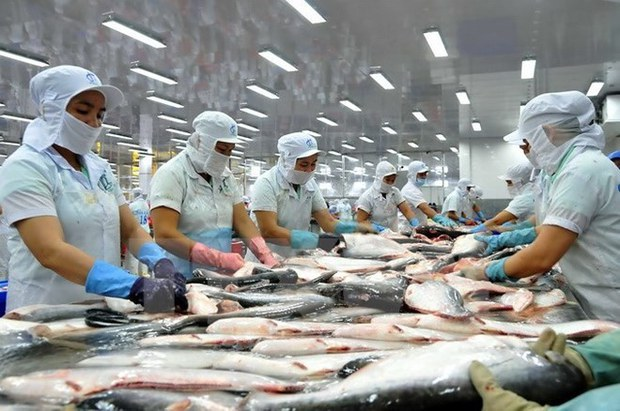 Xuất khẩu cá tra của Việt Nam tăng lại sau hai năm sụt giảm