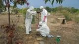 Hoàn thành giai đoạn một dự án xử lý ô nhiễm dioxin sân bay Biên Hòa