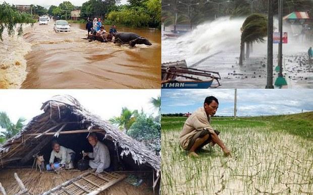 Chính phủ cấp gạo cứu đói cho người dân Cao Bằng và Sơn La