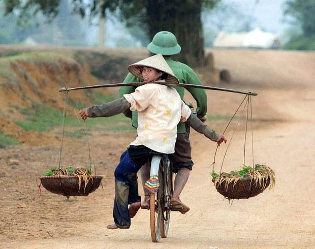 Người nông dân gánh mạ (minh họa)