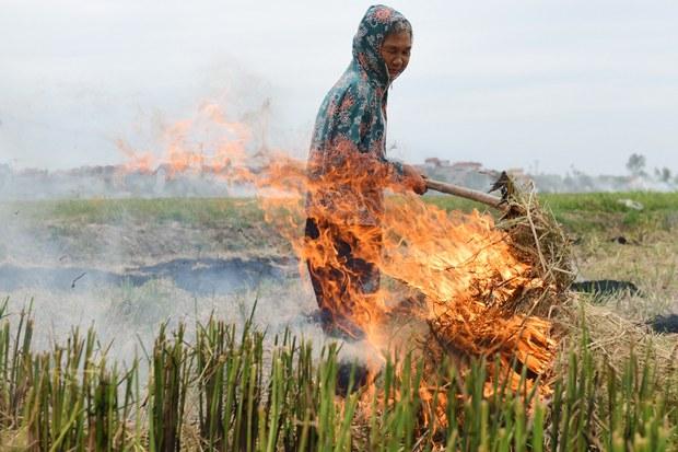 Ngân hàng Thế giới: TP Hà Nội cần thực hiện chính sách quản lý chất lượng không khí